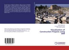 Bookcover of Visualization of Construction Projects using BIM