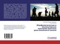 Bookcover of Морфологические и молекулярные критерии прогноза рака анального канала