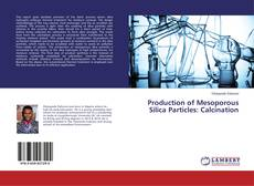 Bookcover of Production of Mesoporous Silica Particles: Calcination