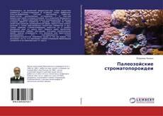 Bookcover of Палеозойские строматопороидеи