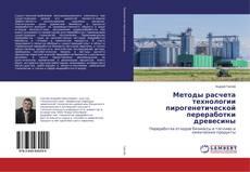 Bookcover of Методы расчета технологии пирогенетической переработки древесины