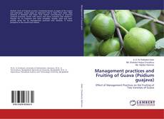 Bookcover of Management practices and Fruiting of Guava (Psidium guajava)