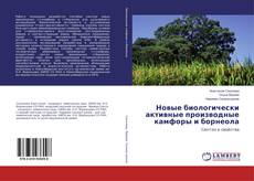 Bookcover of Новые биологически активные производные камфоры и борнеола