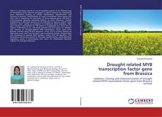 Copertina di Drought related MYB transcription factor gene from Brassica