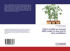 Обложка Effect of EMS on tomato HSPs under in vivo and in vitro conditions
