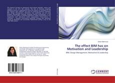 Обложка The effect BIM has on Motivation and Leadership