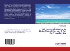 Capa do livro de Microwave absorption in Pb-Ca-Nb multiferroics & Ca-Co-Ti hexaferrites