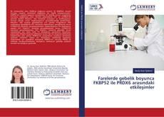 Bookcover of Farelerde gebelik boyunca FKBP52 ile PRDX6 arasındaki etkileşimler