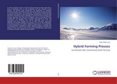 Bookcover of Hybrid Forming Process