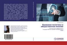 Bookcover of Правовая политика и общественное мнение