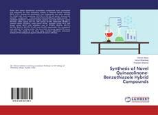Copertina di Synthesis of Novel Quinazolinone-Benzothiazole Hybrid Compounds