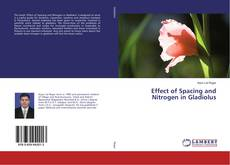 Bookcover of Effect of Spacing and Nitrogen in Gladiolus