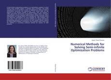 Buchcover von Numerical Methods for Solving Semi-infinite Optimization Problems