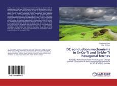 Capa do livro de DC conduction mechanisms in Sr-Co-Ti and Sr-Mn-Ti hexagonal ferrites