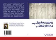 Buchcover von Дифференциация сортообразцов риса по темпам роста и развития растений