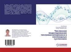 Buchcover von Численное моделирование тепломассопереноса в коллоидных суспензиях