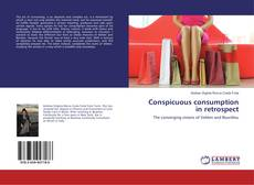 Capa do livro de Conspicuous consumption in retrospect