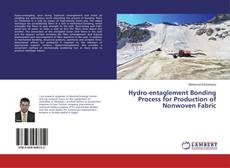 Bookcover of Hydro-entaglement Bonding Process for Production of Nonwoven Fabric