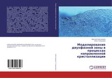 Bookcover of Моделирование двухфазной зоны в процессах направленной кристаллизации