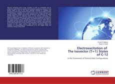 Bookcover of Electroexcitation of The Isovector (T=1) States of C-12