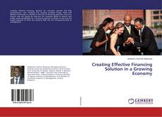 Creating Effective Financing Solution in a Growing Economy kitap kapağı
