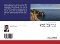 Bookcover of Jurassic Sediments in Andigama, Sri Lanka