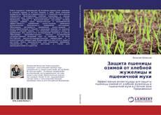 Защита пшеницы озимой от хлебной жужелицы и пшеничной мухи的封面