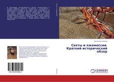 Секты и лжемессии. Краткий исторический обзор kitap kapağı