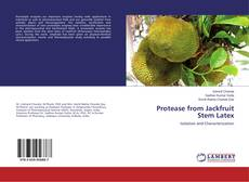 Protease from Jackfruit Stem Latex的封面