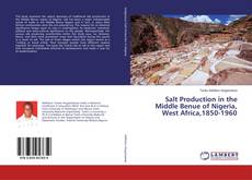 Copertina di Salt Production in the Middle Benue of Nigeria, West Africa,1850-1960
