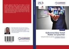 Kalkınmacılıkta Temel Riskler ve Çözümler kitap kapağı