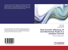 Bookcover of Heat transfer efficiency of non-Newtonian fluids in a complex channel