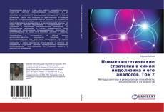 Copertina di Новые синтетические стратегии в химии индолизина и его аналогов. Том 2