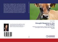 Bookcover of Drought Response in the Grey Valley
