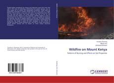 Buchcover von Wildfire on Mount Kenya