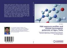 Bookcover of PAH exposure profiles and related carcinogenic potencies at Agra, India