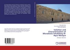 Borítókép a  Isolation and Characterization of Microbiota Inhabiting Al-Aqsa Mosque - hoz
