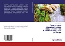 Bookcover of Природная защищенность подземных вод Калининградской области