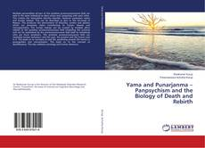 Buchcover von Yama and Punarjanma – Panpsychism and the Biology of Death and Rebirth