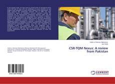 CSR-TQM Nexus: A review from Pakistan kitap kapağı