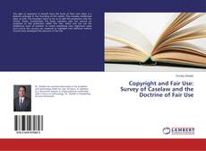 Copertina di Copyright and Fair Use: Survey of Caselaw and the Doctrine of Fair Use