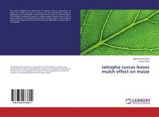 Bookcover of Jatropha curcas leaves mulch effect on maize