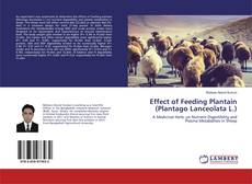 Capa do livro de Effect of Feeding Plantain (Plantago Lanceolata L.)
