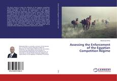 Bookcover of Assessing the Enforcement of the Egyptian Competition Regime