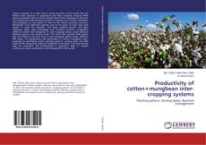 Bookcover of Productivity of cotton+mungbean inter-cropping systems