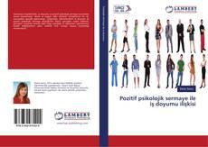 Bookcover of Pozitif psikolojik sermaye ile iş doyumu ilişkisi