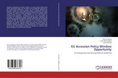 Copertina di EU Accession Policy Window Opportunity