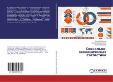 Buchcover von Социально-экономическая статистика