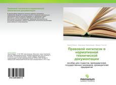 Bookcover of Правовой нигилизм в нормативной технической документации