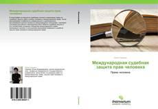 Международная судебная защита прав человека的封面